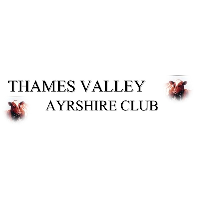 Thames Valley Ayrshire Club